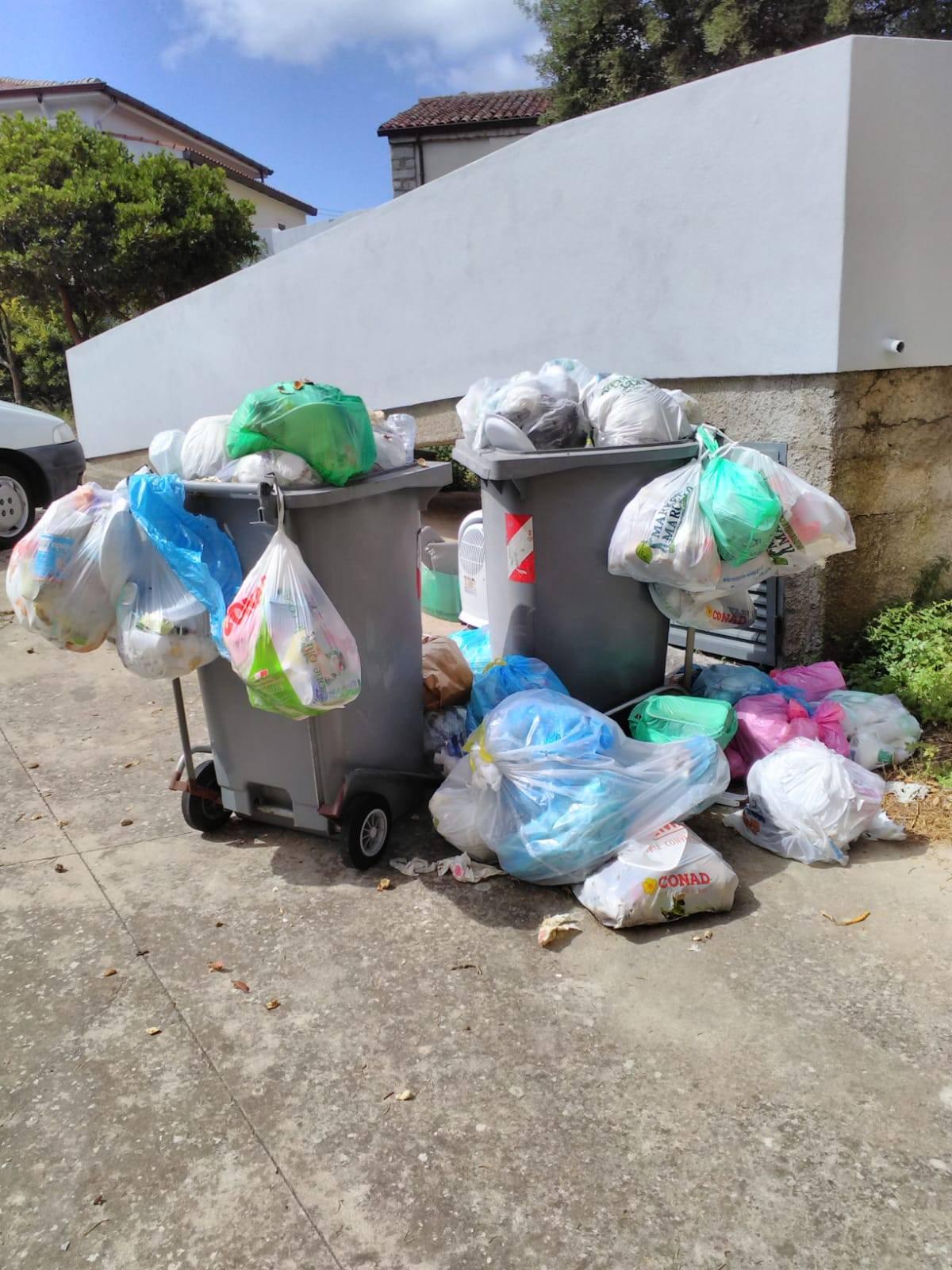pene della spazzatura